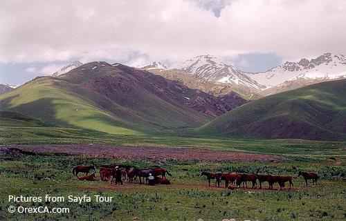 Ландшафты Кыргызстана