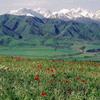 Природа Кыргызстана. Фотографии Кыргызстана